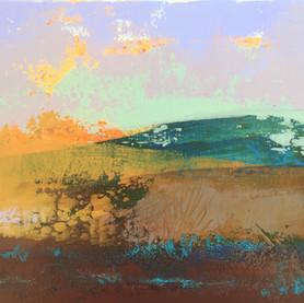 Curragh Landscape 9