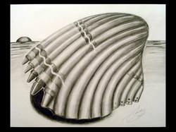 2-D Design SurrealScale & Proportion