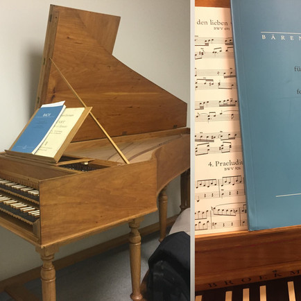 New year: harpsichord training, new multimedia production, and more!