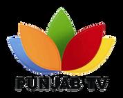 PUNJAB TV.png