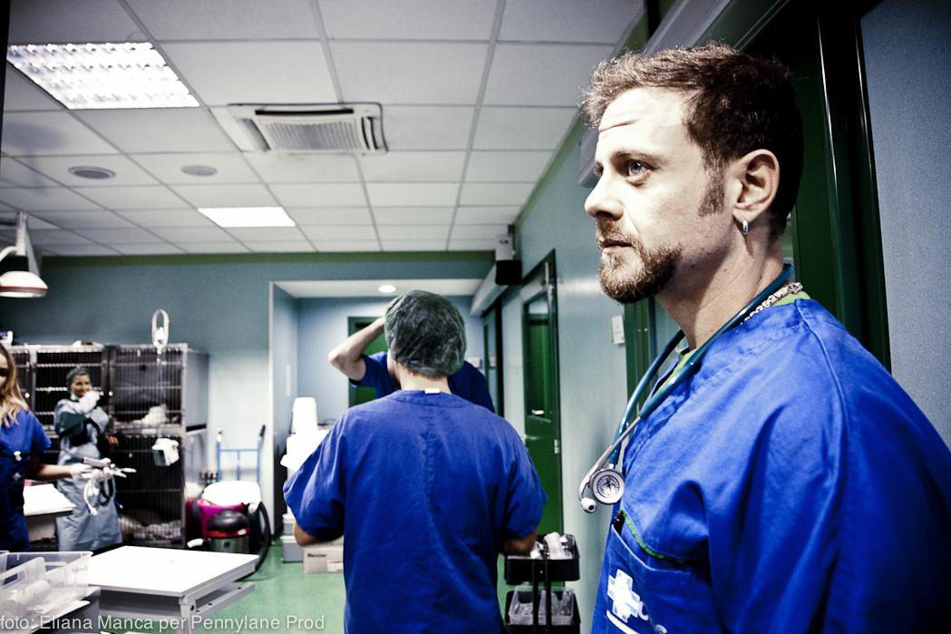 Dr. Davide Vasile