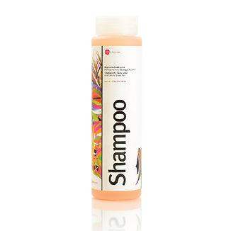 shampoo-01.jpg