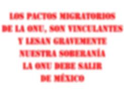 ES-VINCULANTE.jpg