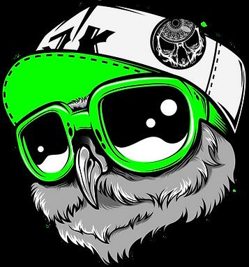 Rap Owl