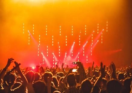 people-enjoying-the-concert-1047442.jpg