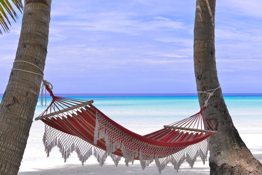 red-hammock-tied-between-two-trees-14503