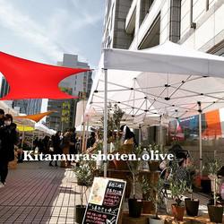 3月は毎週土日、青山ファーマーズマーケットにて出店します!