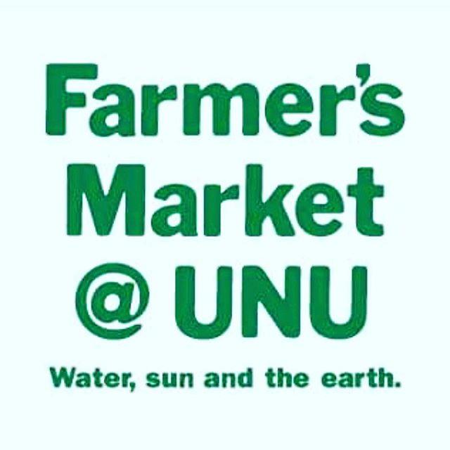 青山 Farmer's Market 出店始めました