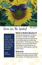 McKee Beshers Brochure3.jpg