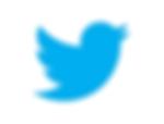 logo-twitter1.png