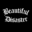 beautiful disaster3.png
