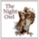 LOGO NIGHT OWL3.png