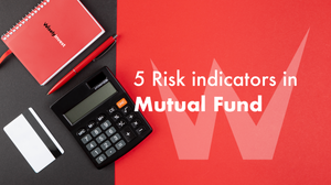 Risk in Mutual Funds