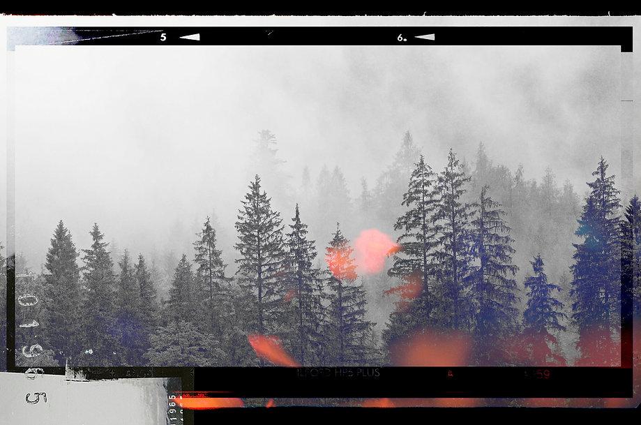 Banner prod.jpg