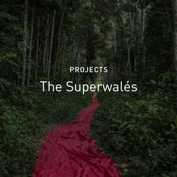 new_c_The_Superwalés_-_Projects