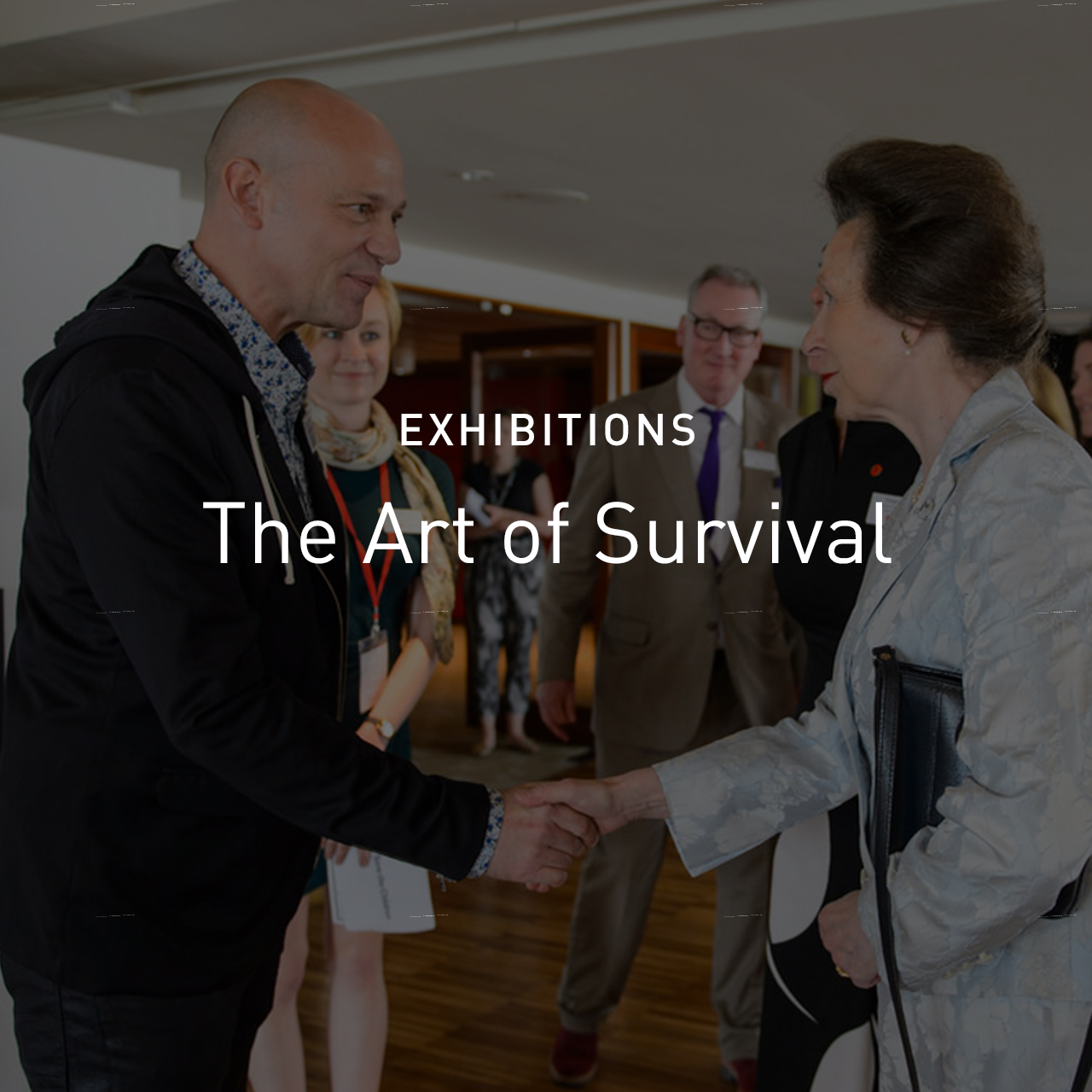 new_c_The Art of Survival - Exhibitions