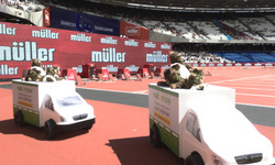 Muller Bears trying to escape