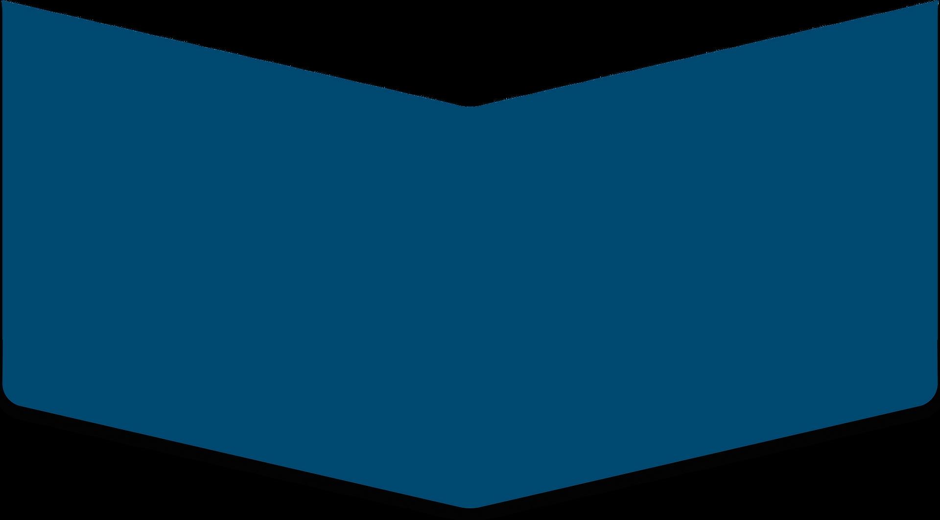 Salomons Groep Dronten V-vorm Blauw scha