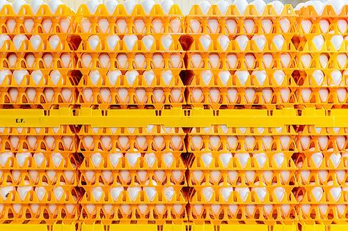 Salomons Groep Dronten techniek 151.jpg