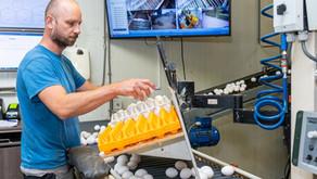 Sneller eieren verwerken, meer veiligheid in de stallen