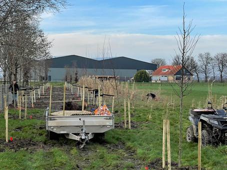 Bomen planten Pluimveebedrijven
