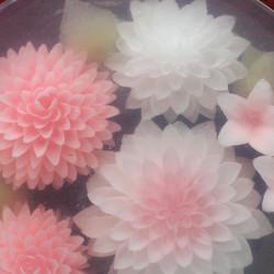pink-pinpon700