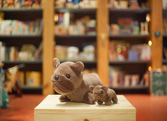 Bulldog com filhote