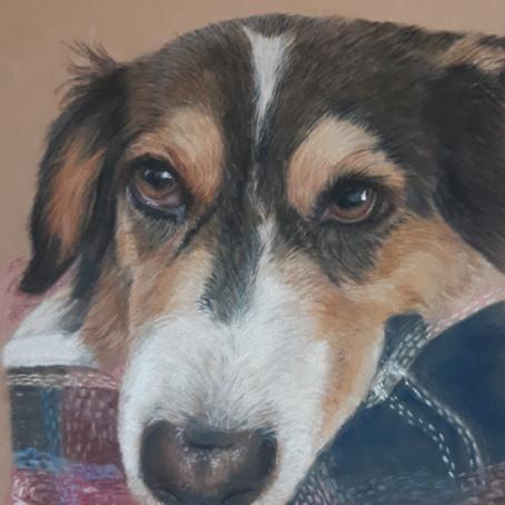 Latest commissioned portrait plus....