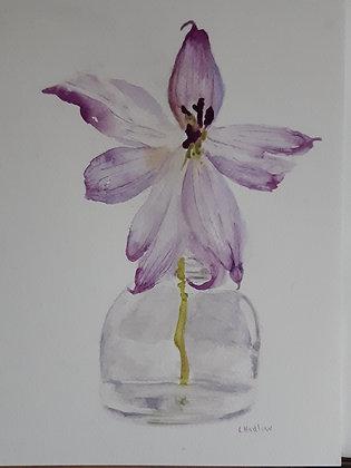Loose Floral Watercolour