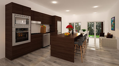 kitchen and living.jpg