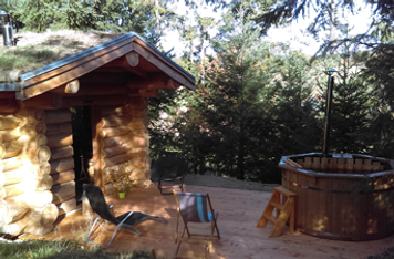 Sauna et bain nordique