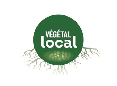 Végétale Local, késako ?