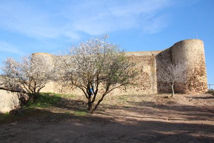Castelejo