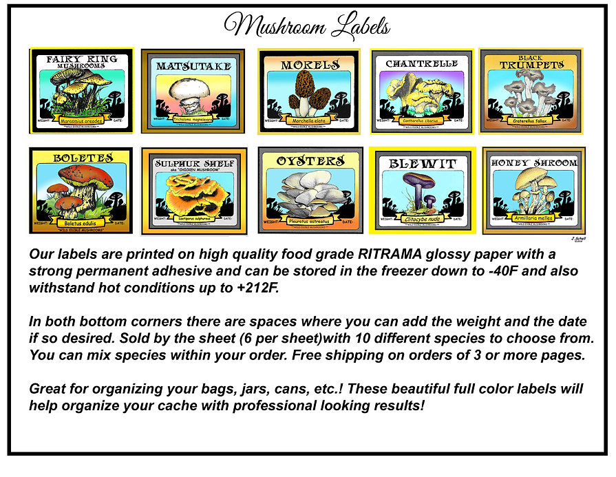 Mushroom Label Viewing Page.jpg