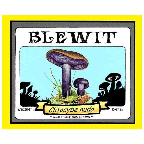 BLEWITS
