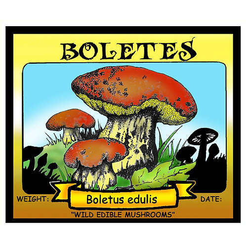 BOLETES