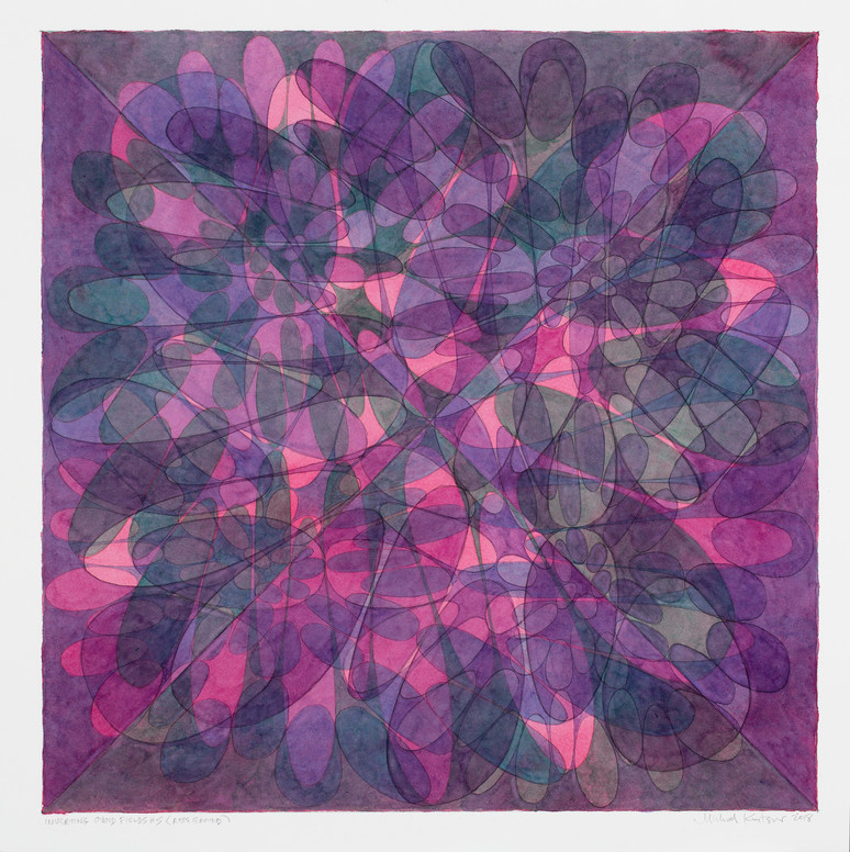 Inverting Ovoid Fields #5 (square, rose