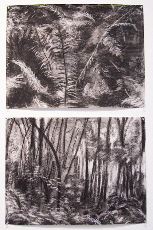 El Escondite - El Bosque 1 (hiding place, forest, )