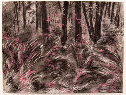 El Escondite - El Bosque (2)