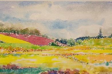 Landscape at Ankeny Wildlife Refuge