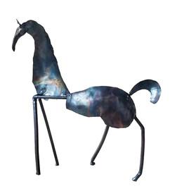 Frisky Little Horse