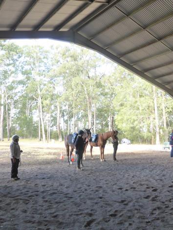 Ground Hire Equestrian Natural Horsemanship