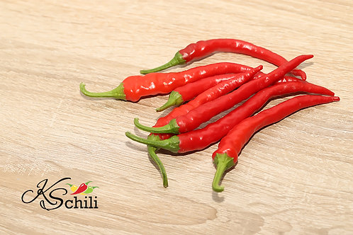 """Cayenne Long Slim"" Pepper 8 Seeds (Capsicum Annuum)"