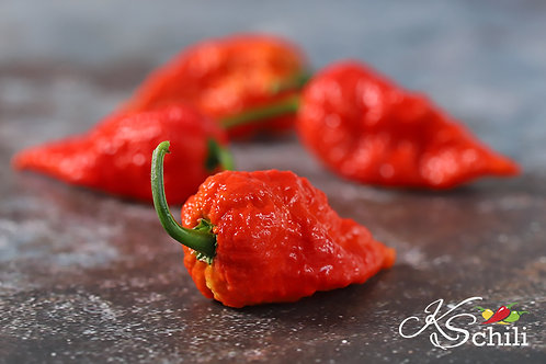 """Brent's Red"" Pepper 8 Seeds (Capsicum Chinense)"