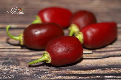 """Brown Egg"" Pepper 8 Seeds (Capsicum Chinense)"