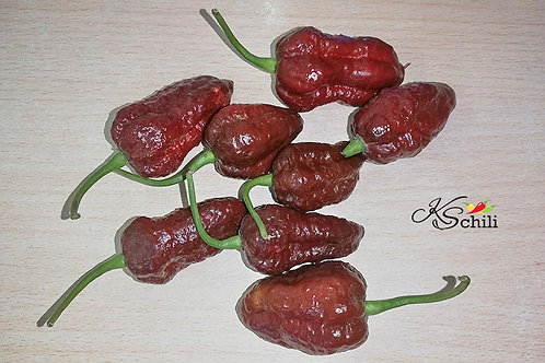 """Chocolate Scorpion"" Pepper 8 Seeds (Capsicum Chinense)"