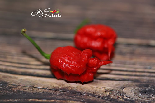 """Carolina Reaper"" Pepper 8 Seeds (Capsicum Chinense)"