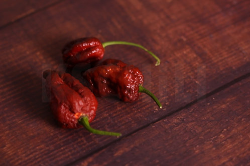 """Fatalii Chocolate"" Pepper 8 Seeds (Capsicum Chinense)"