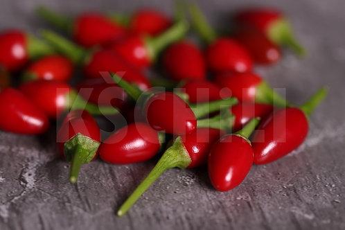 """Bird's Eye Baby"" Chili Hot Pepper 8 Seeds (Capsicum Annuum)"