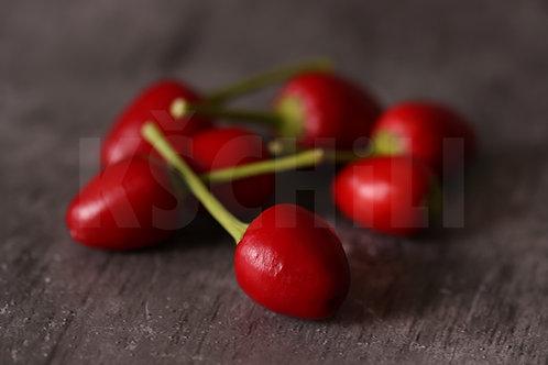 """""""Hot Beads"""" Chili Pepper 8 Seeds (Capsicum Annuum)"""